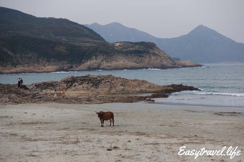 Hong Kong UNESCO Global Geopark